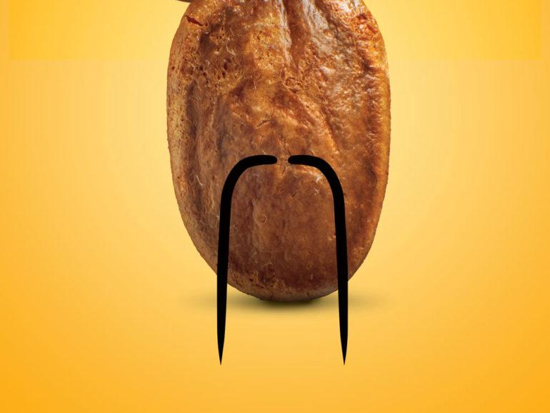 Jaboni roasted seed